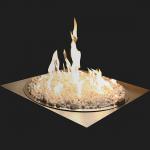 OUTDOOR FIRE GAS 30